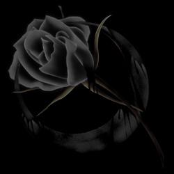 黑色背景 - 奥若 - 驾驭海的河