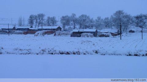 东北这疙瘩(原创散文) - 雪野木屋 - 雪野木屋的博客