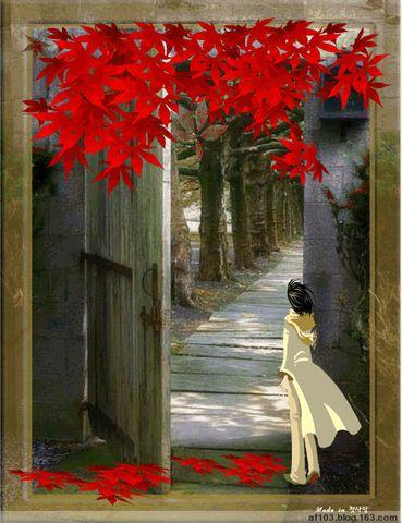 贴图吧(来访博友可贴) - 青青茉莉花 - 保护自然.崇尚真理.热爱生活