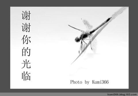 个人作品展之一  (原创) - kumi366 - kumi366的博客