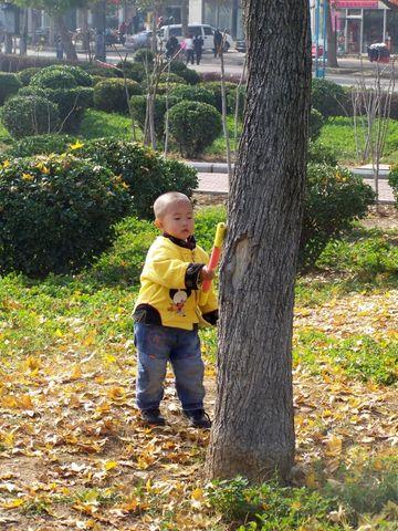 大树.小树.孩子和树 - 海的微笑 - 海的微笑