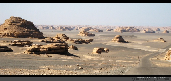 (原创)情系大漠 - 大漠胡杨 -   大 漠 胡 杨