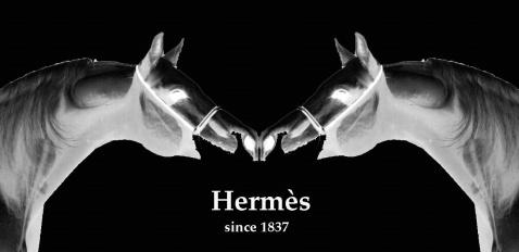 Hermès-低調優雅170年 - Des ellegarcons - des elle' s