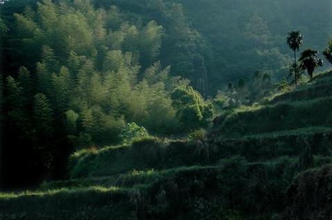 引用 林坑古村落 - 寒窗书虫 - 寒窗书虫