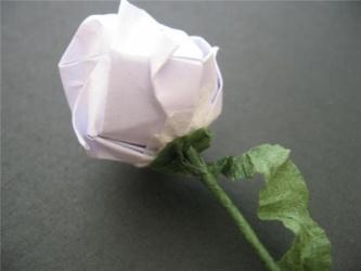 情人节跟我来做一朵玫瑰花吧^_^ - 影子 - 影子之美