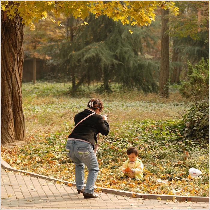 [原创]青岛八大关——几张秋色小景 - 迁徙的鸟 - 迁徙鸟儿的湿地