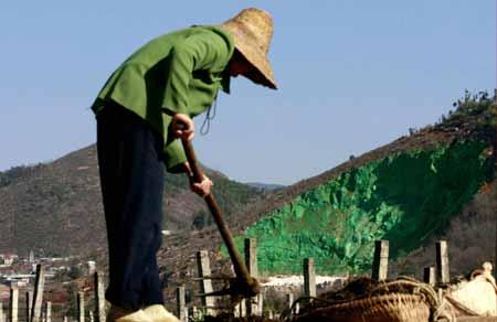 """【引用】(原创) 面子工程:荒山涂漆搞""""绿化"""" - 人生如水 - 人生如水的博客"""