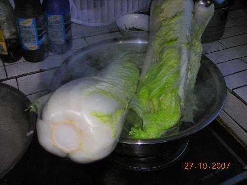 积酸菜 - 双塔山 - sts8658的博客