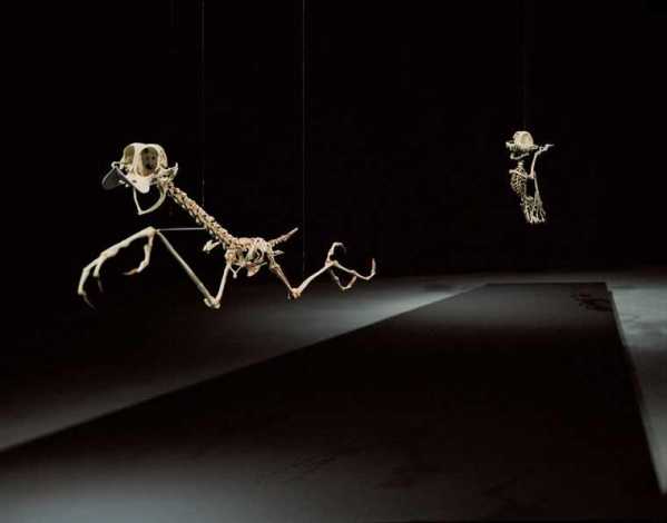 [digg] 卡通人物骨骼 - 李二嫂的猪 - 翱翔的板儿砖