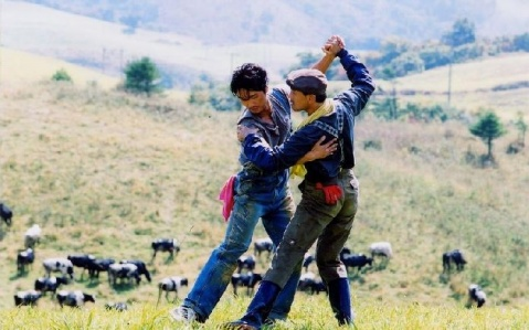 【专辑】Dance with the Wind 随风起舞 MP3/320Kbps - 淡泊 - 淡泊