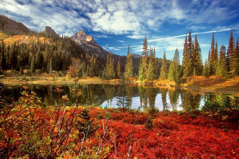 犹如天堂的风景 风景如画  - 無為居士 - 無為齋