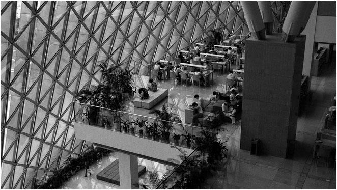 [原]深圳图书馆及市民中心 - Tarzan - 走过大地