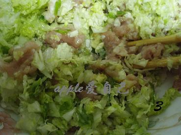 唯女子与小人难养也-----猪肉白菜蒸饺 - 可可西里 - 可可西里