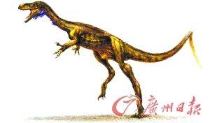 Eodromaeus����