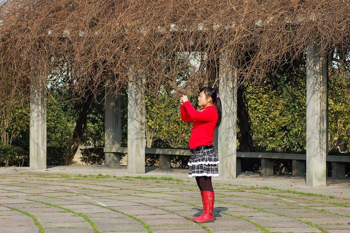 原创【南郊公园新年光影】 - 阿新 - 阿新原创摄影小屋