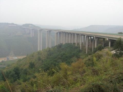 洛 川 县 - 圣地白鸽 - 圣地白鸽(莺鸣)的鸟巢