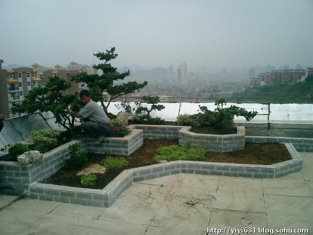 屋顶花园 屋顶菜园
