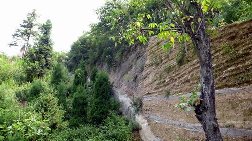 闲话:山水画卷上的竹溪(二) - 方方 - 方方