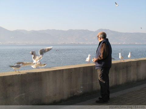 Euphoria · Seagulls - KiKi - Go Your Own Way, Go!