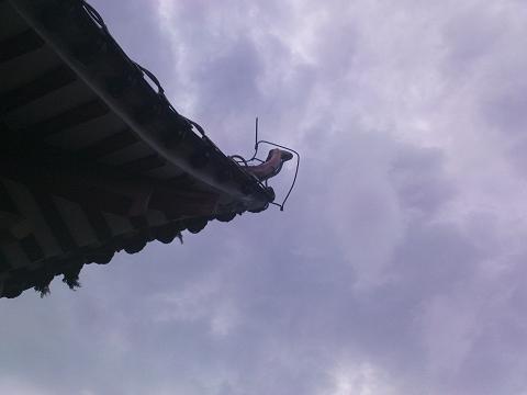九号风球前的那一个下午... - 蓝蝴蝶 - 蓝蝴蝶@乐评人