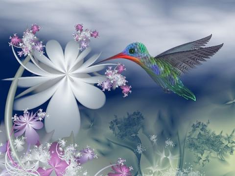 梦幻般的美丽 - 珍惜缘分 - 珍惜缘分的家园