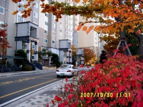 韩国的秋天 - 非文 - 非文的博客