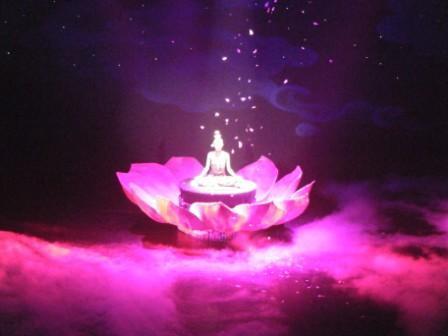 11/28 看《藏迷》 - 老虎闻玫瑰 - 老虎闻玫瑰的博客