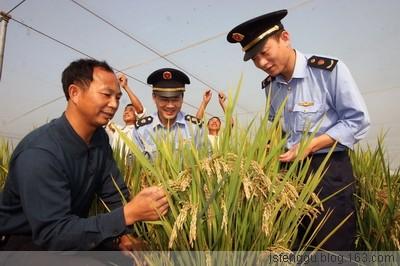 GPIT与 农 业 科 技 推 广 - 江苏省丰谷种业有限公司 - 江苏省生态农业有限公司