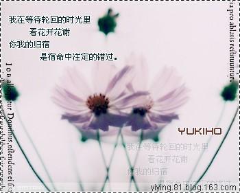 【翼莹练笔】散落一地的思绪 - 翼语莹心 - 翼语莹心的蝴蝶居