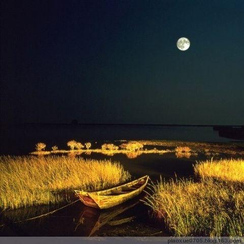 月夜寄语《原创》 - 竹林飘雪 - 竹林飘雪的博客
