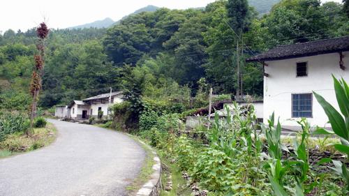 闲话:山水画卷上的竹溪(一) - 方方 - 方方