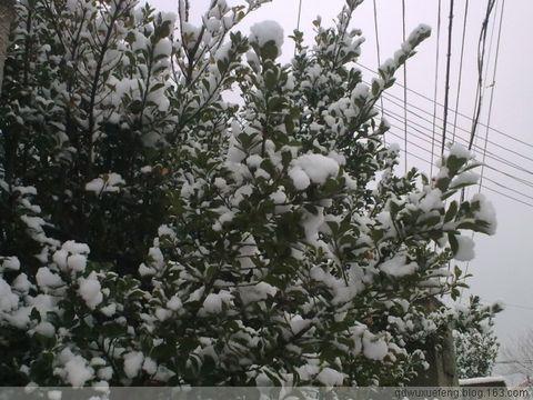 [原]冬至 - 海港的街道 - 海港的街道
