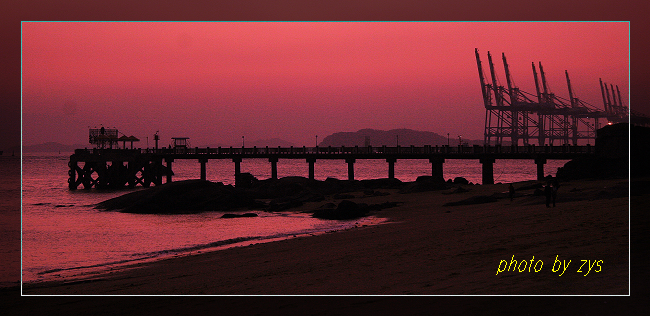 情在鹭岛夜未眠【原】 - 自由诗 - 人文历史自然 诗词曲赋杂谈