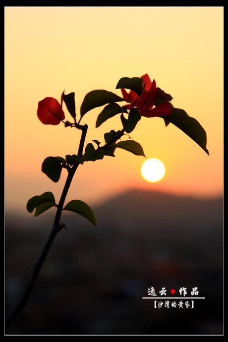 日落黄昏 - 逸云 - 逸云的博客