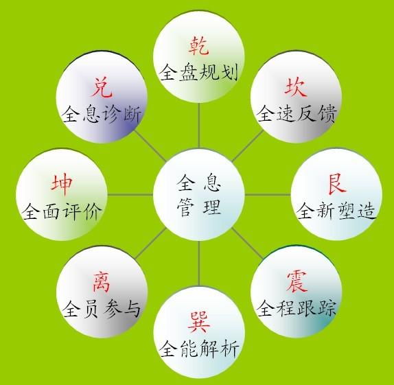 全息管理理论模型纲要(中)