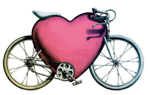 蜜月单车游  - 雨轩 - 紫色天香