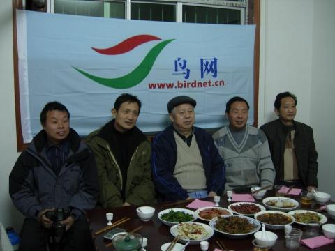 鸟网联络站 - zhuhuanainiao - 朱鹮爱鸟协会
