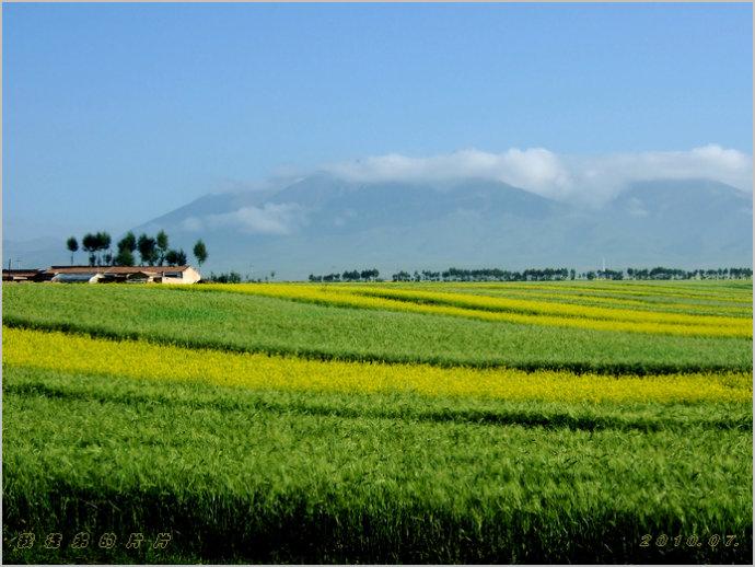 大美青海.在路上_行走在西部的草原_新浪博客 - 行走在西部的草原 - 行走在西部的草原