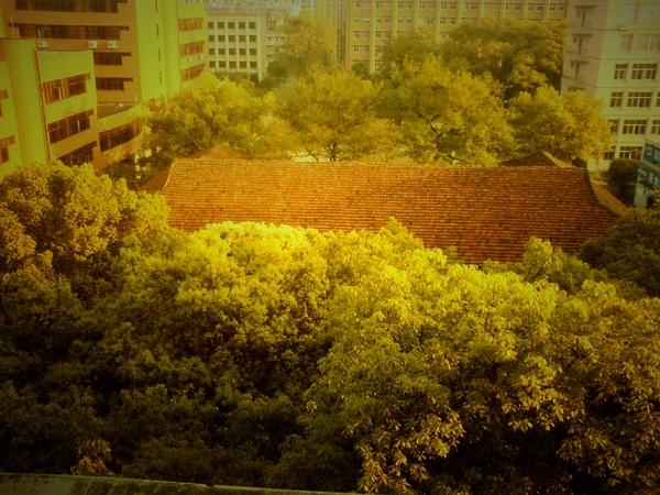 广州大学城 - 华奇龙 - 广工华奇龙