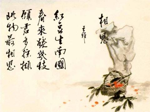 红豆再生南国 - 丽斯 - 朱丽斯博客