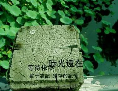 偶像 - 饺子 - ......秘密花园......