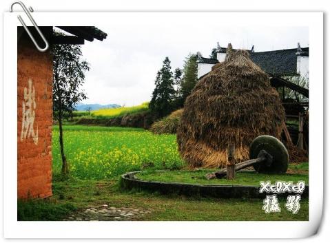 【环游闽赣浙】9、严田古樟民俗园 - xixi - 老孟(xixi)旅游摄影博客