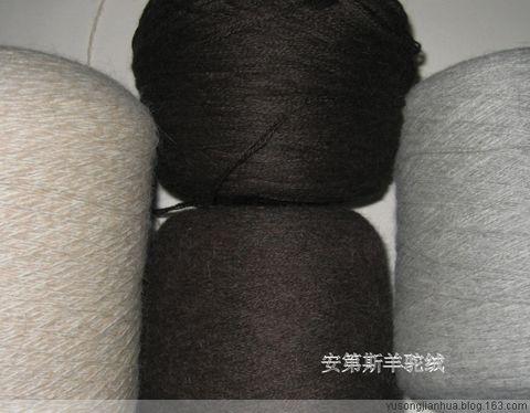 安第斯羊驼绒 - 郁金香 - 俗人白话