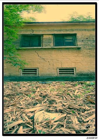 乡村作品(本人第一次的接片) - 常春藤 - 常春藤摄影联盟