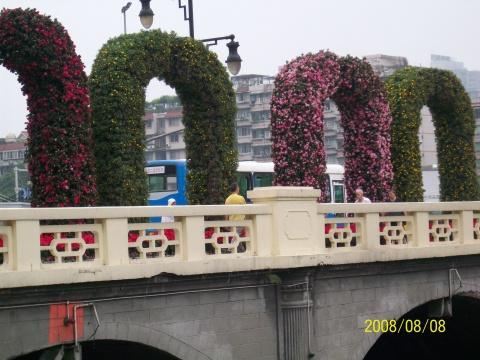 (秦文才)成都数万盆鲜花喜迎奥运 - 曾经的水文地质工程兵 - 曾经的水文地质工程兵之家