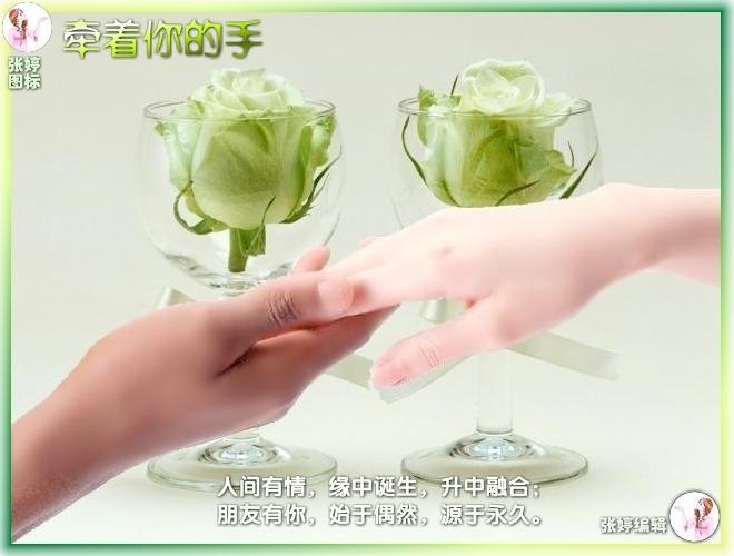 秘籍:手指告诉你寿命有多长![视频] - 浮萍 - 浮萍的博客
