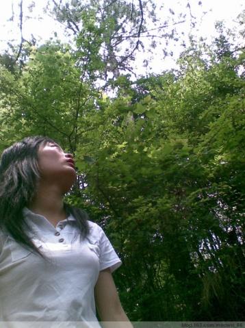 十八岁,那回莫名的握手(诗歌) - 林双喜 - 林双喜的博客