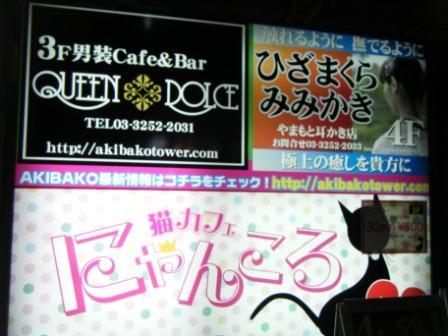 女仆咖啡---东瀛情色录5 - 老虎闻玫瑰 - 老虎闻玫瑰的博客