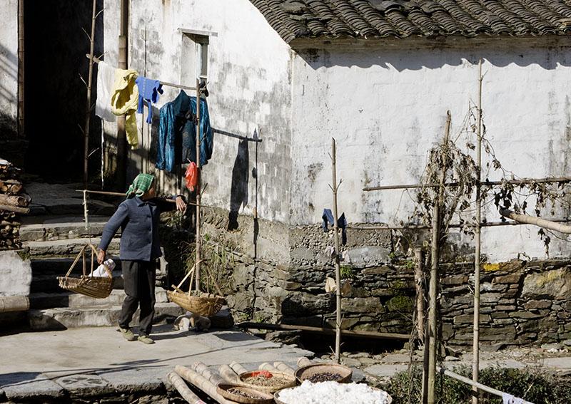 行行摄摄——江西婺源(原) - 菜鸟 - 菜鸟