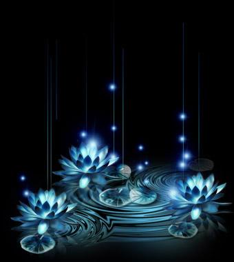 咫尺中一份远远的爱 [原创] - 温柔细雨 - 一丝小雨盈盈而落......